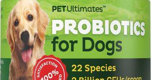 قیمت فروش عمده پروبیوتیک سگ و گربه