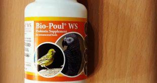 پروبیوتیک پرندگان