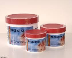 پروبیوتیک پروتکسین قناری